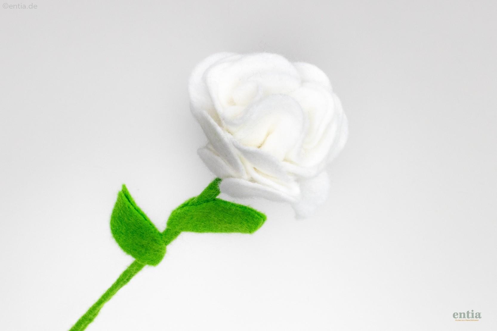 Filzblume weiß