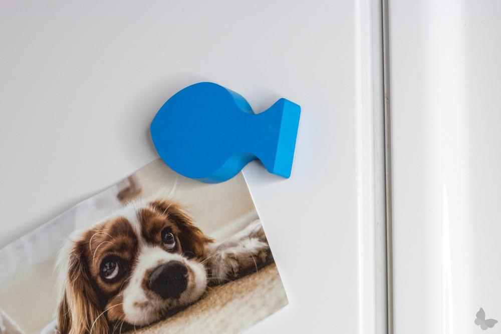 Magnetfisch Kühlschrankmagnet, blau