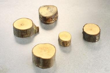 Magnet-Halter aus Astscheiben