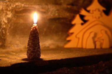 Tannenzapfen-Kerzen, braun