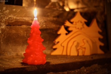 Tannenbaum-Kerze,rot,einfarbig