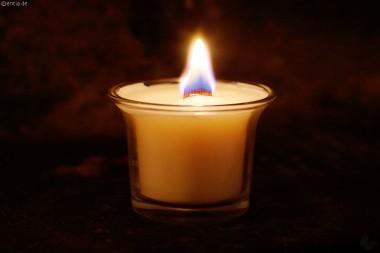 Zimt-Öko-Kerze mit Holzdocht